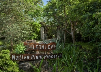 Welcome to the Levy Preserve