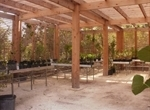 New Lath House used for growing native plants